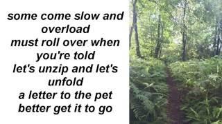 Red Hot Chili Peppers - I Like Dirt (lyrics)