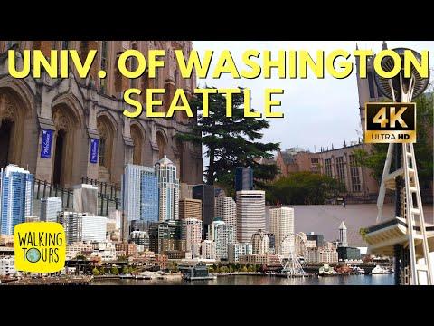 University Of Washington Campus Tour   4K Walking Tour