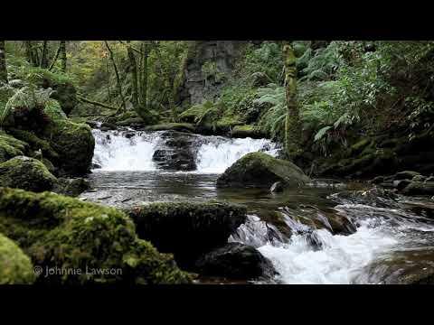 MEDITATION-3D Landscape-Sounds of Nature-Water Noises-Tranquil Bird Song-entspannen Landschaft