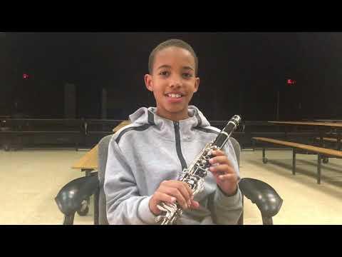 Cayman Arts Trust  Free Instrumental Lesson Program in Cayman's Public Schools 2018