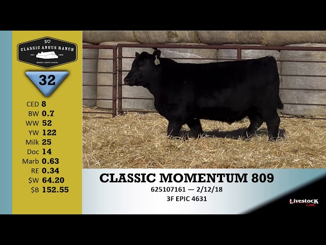 Classic Angus Ranch Lot 32