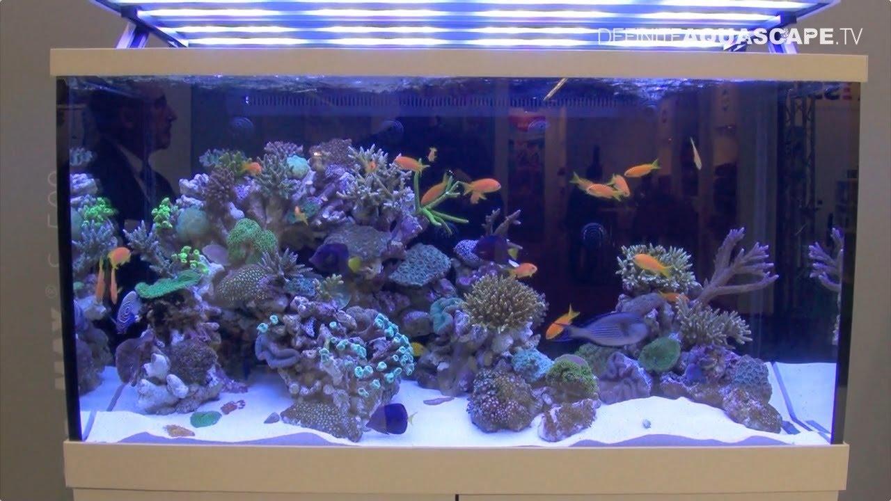 aquarium ideas from interzoo 2014 red sea youtube. Black Bedroom Furniture Sets. Home Design Ideas