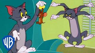 Tom y Jerry en Latino | Diversión en casa | WB Kids