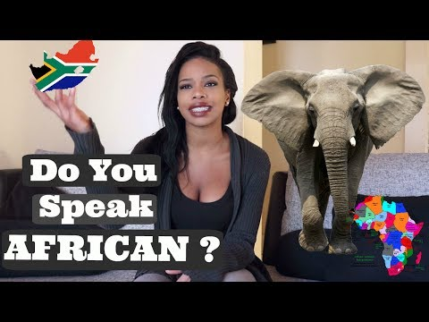 STUPID questions people ASK AFRICANS | South African Youtuber