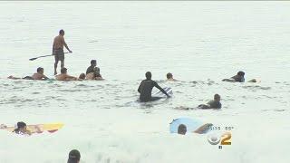 Paddle Out Held To Remember Malib Base Jumper Johnny Strange