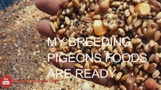 Mixed food for breeding pigeons by rahman pigeons loft
