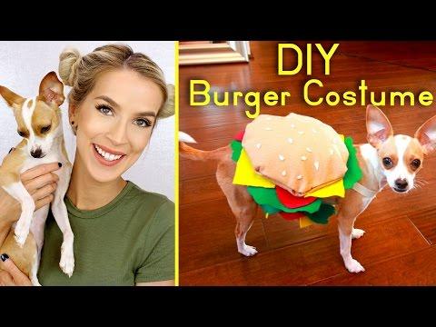 DIY Cute Dog Burger Costume | Halloween 2016 | LeighAnnSays