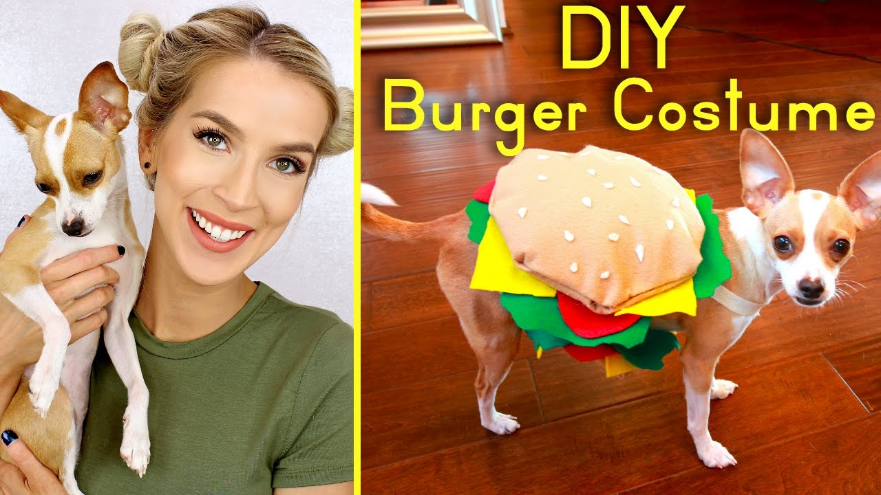 Diy Cute Dog Burger Costume Halloween 2016 Youtube