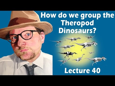 How do we group the Theropod Dinosaurs?