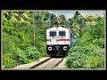 "The ""WHITE STALLION"" SHINES BRIGHT amidst the GREEN !! Indian Railways"
