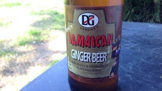 DG Genuine Spicy Jamaican Ginger Beer Review