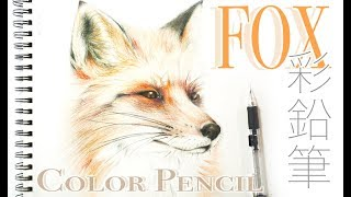 Drawing a Fox - How to draw a Fox with Color Pencils - Fox sketch 彩色鉛筆畫狐狸 彩鉛 狐狸素描 Drawing Tutorial
