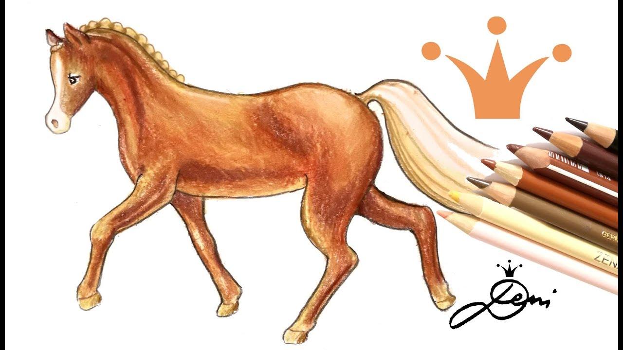Download 🐴  Deutsches Reitpony zeichnen 🐎 Pferd malen 🐎 How to draw a horse