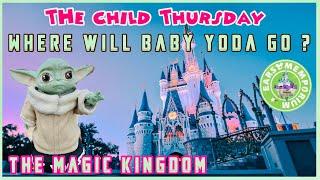 🔴 The Child Thursday.Where Will Baby Yoda Go? The Magic Kingdom.