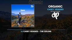 Casey Veggies - Stop Playin (feat  Dom Kennedy) [Organic]