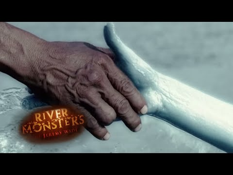 Dragged To Death By A Mermaid | HORROR STORY | River Monsters