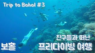 [여행] 친구들과 떠난 보홀 프리다이빙 여행 #3 바다…