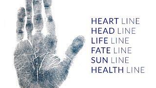 Palmistry Fate Line, Head Line, Heart Line, Life Line, Sun Line, Health Line Analysis (3/12)
