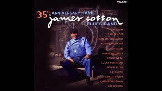 James Cotton Blues Band - I've Got a Feeling