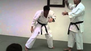 Bunkai Seminar 2013 Video #3 Morote Uke
