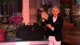 Ellen in a Minute - 03/24/10