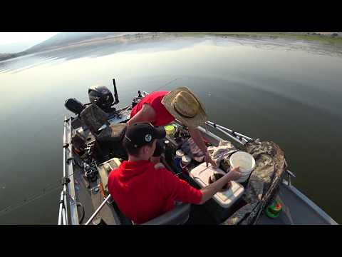 BrownLee 5Lb Channel Catfish -View At HD1080P