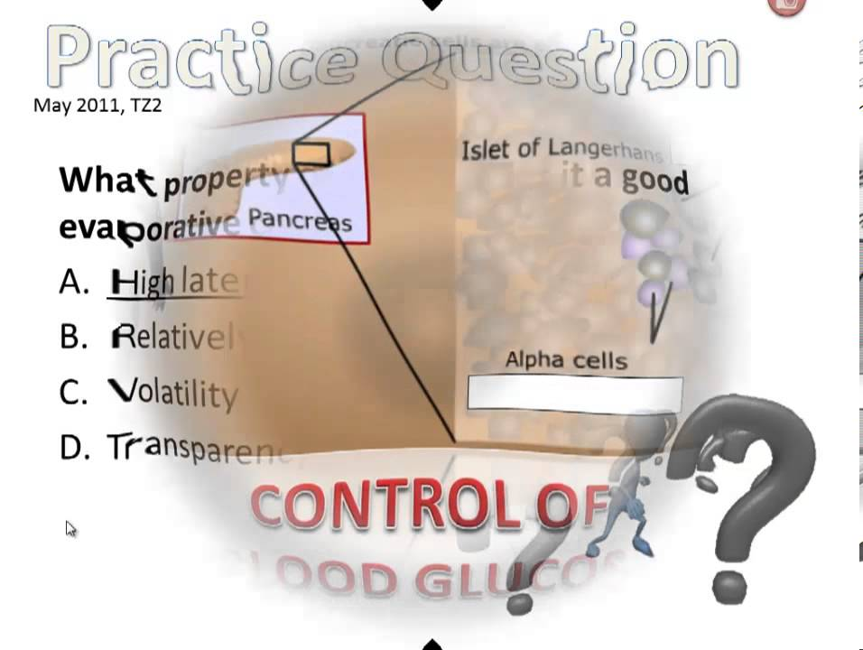 ib biology factors affecting homeostasis Homeostasis is a dynamic equilibrium that is maintained in body tissues and organs it is dynamic because it is constantly adjusting to the changes that the systems encounter it is in equilibrium because body functions are kept within a normal range, with some fluctuations around a set point for the processes.