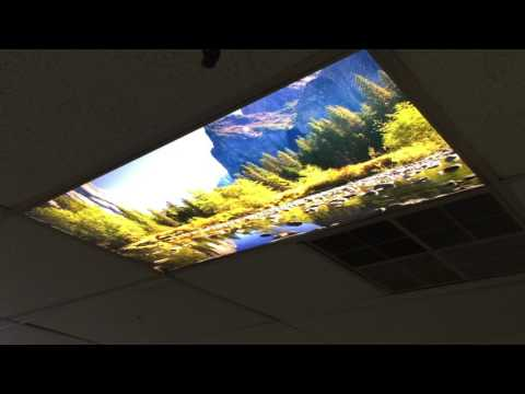 PROLAB Digital offers Window Scapes DeskScapes and Ceiling Scapes and wall decor