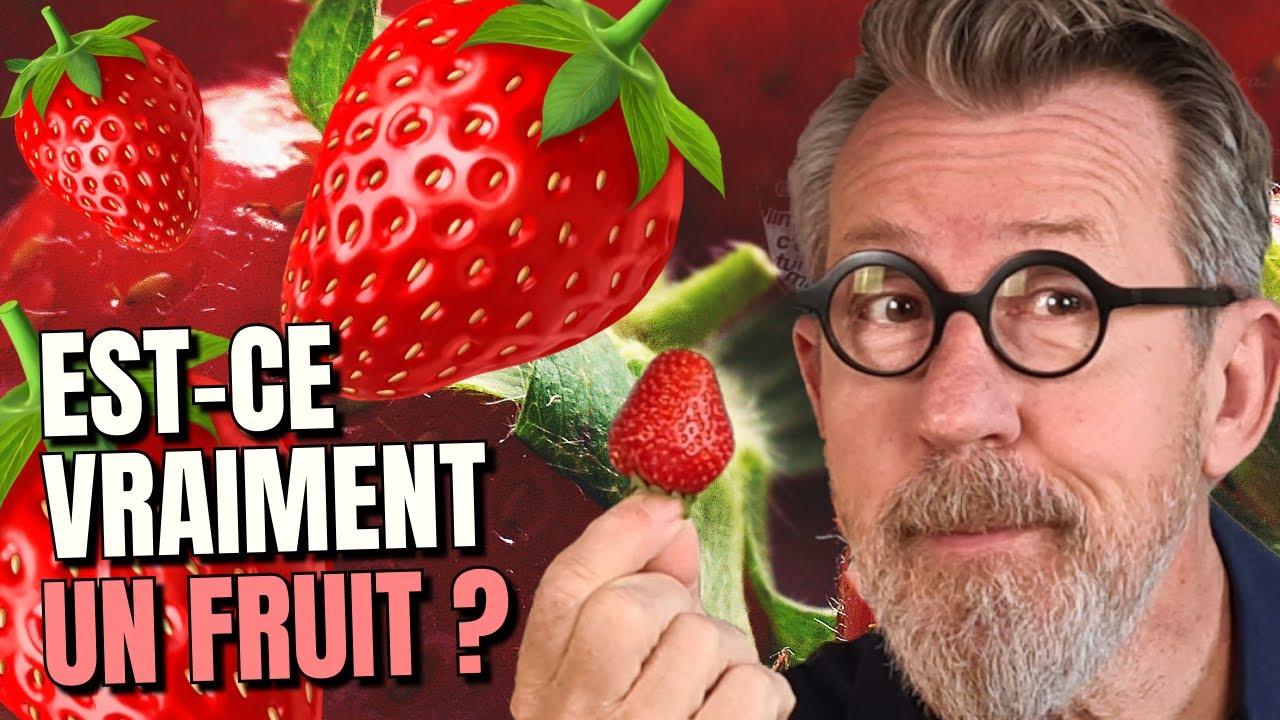 🍓 D'où viennent les fraises ?