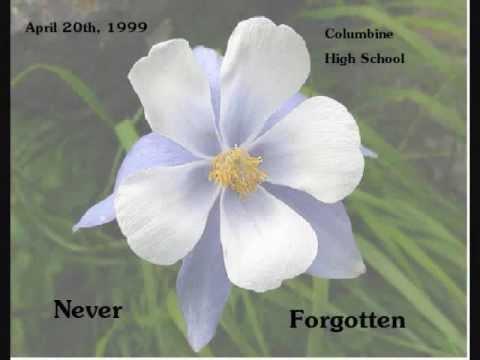 an american elegy a tribute to columbine high school