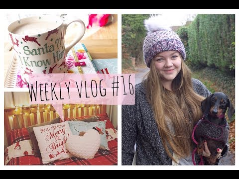 Weekly Vlog #16   2017   Getting Ready for Christmas!