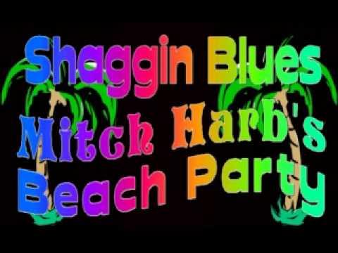 Snooky Pryor   Shake Your Boogie