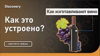 Как изготавливают вино | Как это сделано? | Discovery Channel