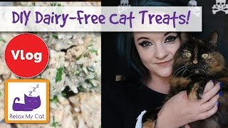 How to Make Dairy-Free Cat Treats! Sardine and Liver Dairy-Free Cat Treat Recipe!