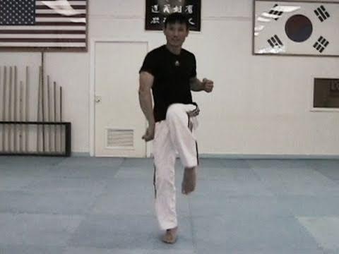 Taekwondo Speed Training - Taekwondo Animals com