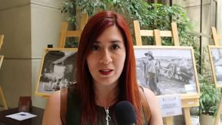 Entrevista: La posición de Revolución Democrática ante el Plebiscito Nacional 2020