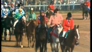 1978 Kentucky Derby - Affirmed -vs- Alydar