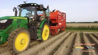 Aardappelrooien met Grimme  DR 1500 Visbeek Marrum