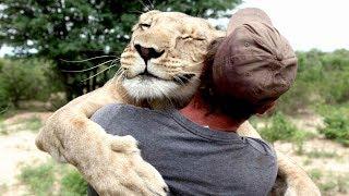 Diese 7 Tiere haben Menschen das Leben gerettet!