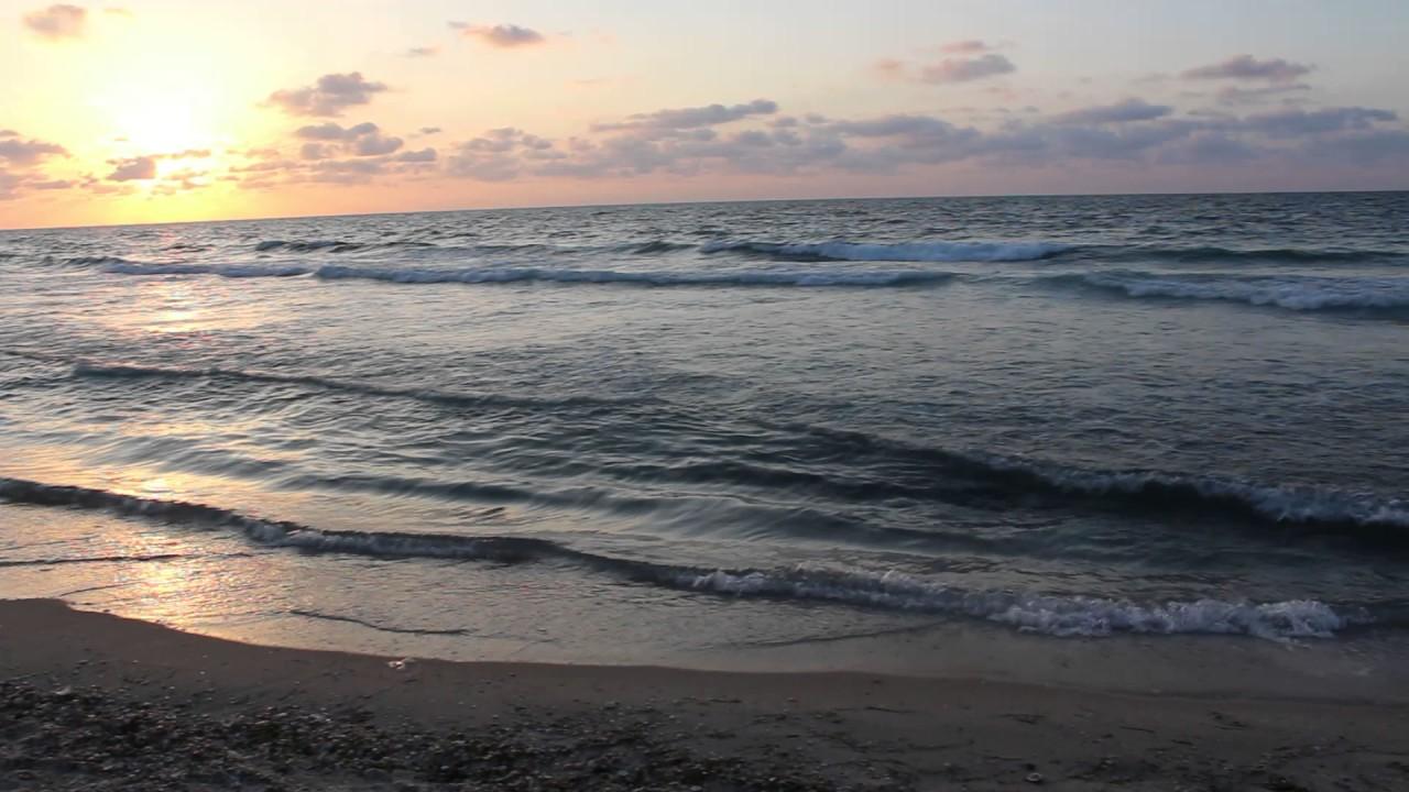 Tropical Island Beach Ambience Sound: شاطئ بحر خانيونس