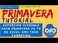 Exporting schedule from Primavera P6 to MS Excel and then formating for updates || dptutorials