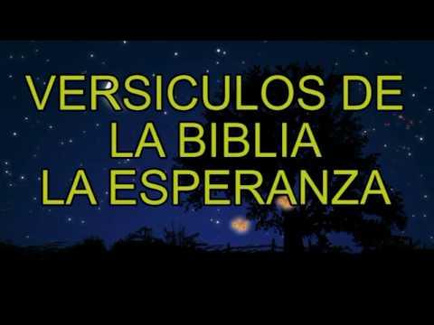 Versículos de la Biblia - la esperanza