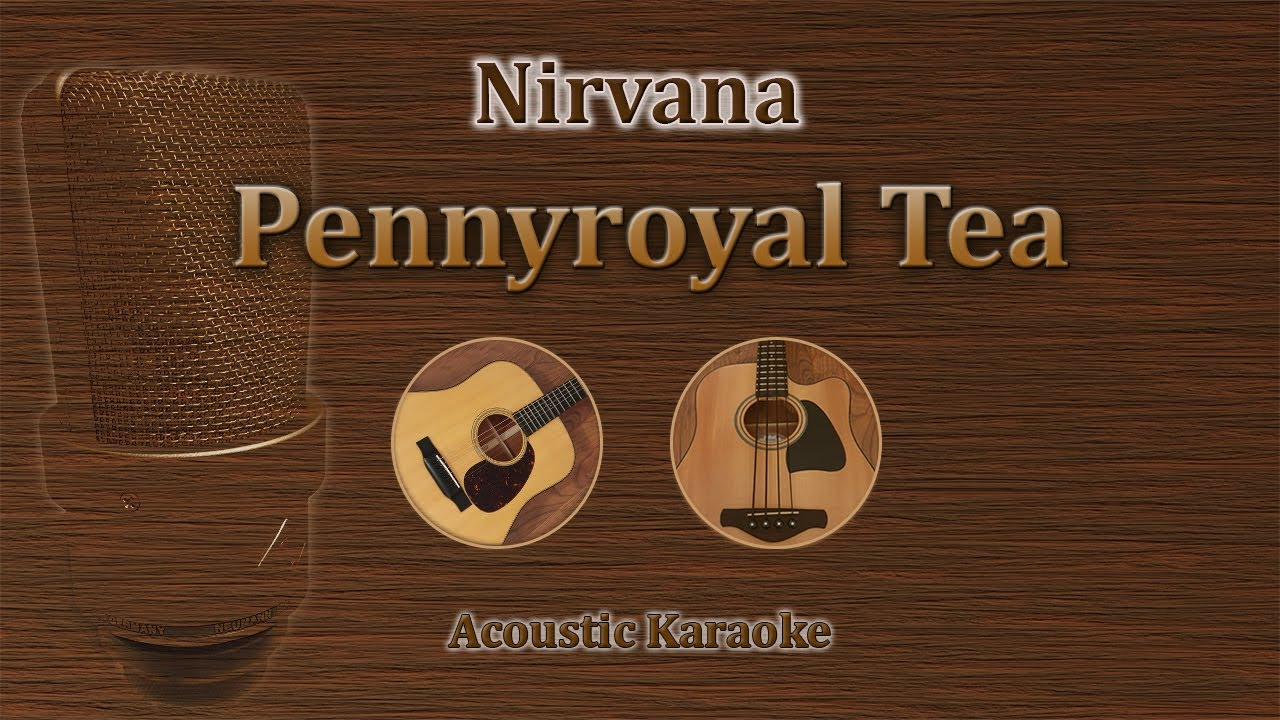 Pennyroyal Tea - Nirvana (Acoustic Karaoke)