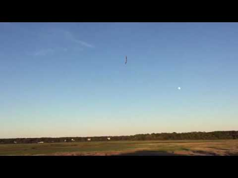 """TekSumo Flying Wing 65mm EDF vs 2200 KV 7""""x6 Propeller"""