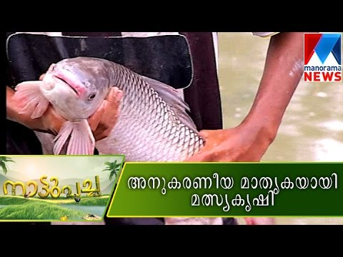 Model fish farm  | Manorama News