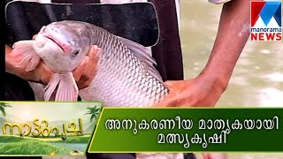 Model fish farm    Manorama News