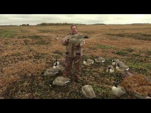 Four Things You Should Know When Setting Up Goose Decoys