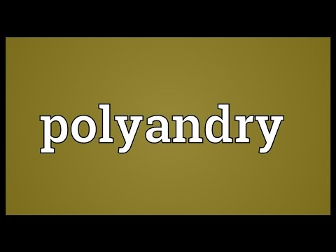Header of polyandry
