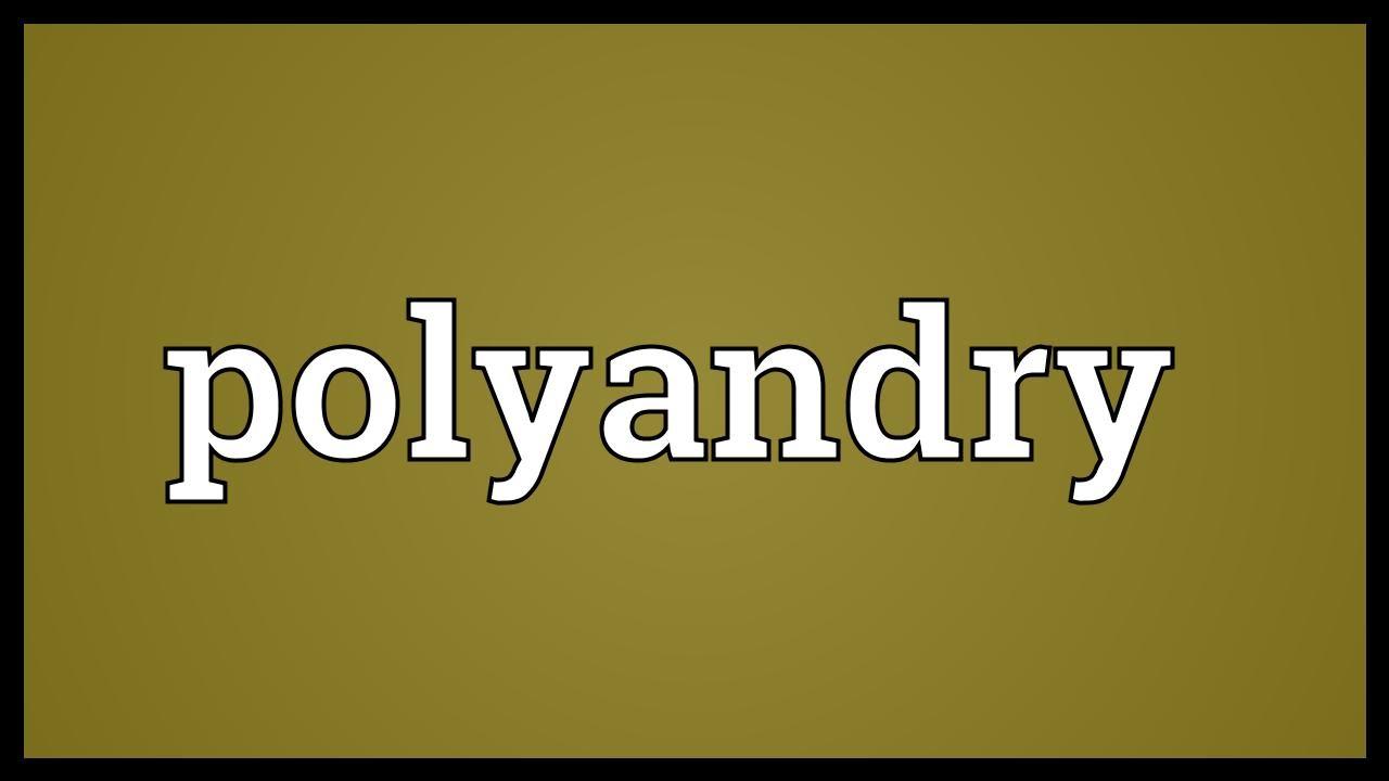 2- POLYANDRY Maxresdefault