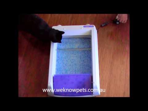ScoopFree Self-Cleaning Litter box